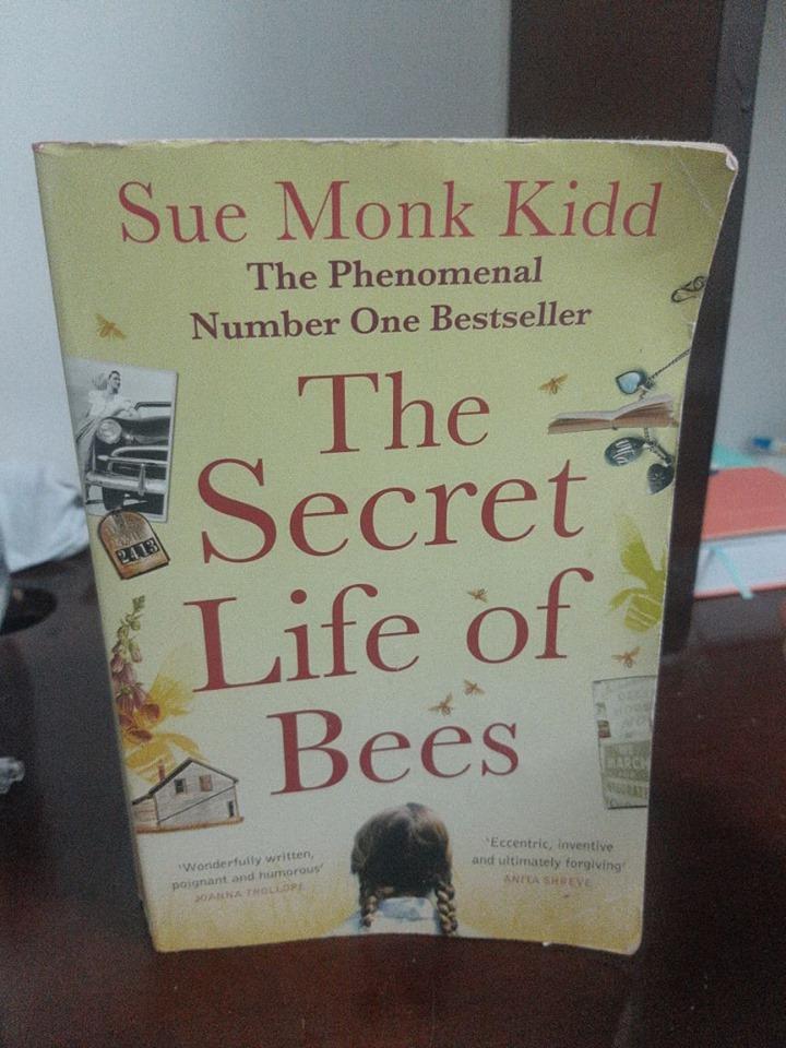 """The Secret Life of Bees"" – Sue MonkKidd"